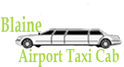Airport Taxi Blaine Offered MSP Limo Service